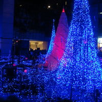 2011 Winter In TOKYO  Illuminations.