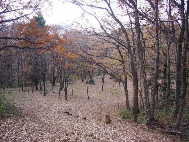 今日は冬の最中、晴天にも恵まれ、武蔵野緑地を散策。鎌倉時代、戦場となった八国山や、久米川古戦場。落ち葉舞い散る道、物悲しげになった山々を見、栄枯盛衰に思いをはせながら歩く。<br />    <br />      <br />      徳蔵寺<br />      久米川古戦場跡<br />      八国山緑地<br />      西武遊園地