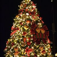 2011冬旅④ TDS CHRISTMAS WISHES & 10th ANNIVERSARY「Be Magical!」/夜の部/クリスマスツリーを探せ!