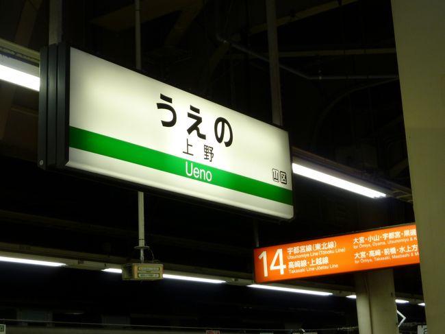 仕事納めの後、クリスマスも過ぎ、何かと忙しい年の瀬のこの時期、<br />上野に出て、アメ横〜上野公園〜上野駅を散策してみました。