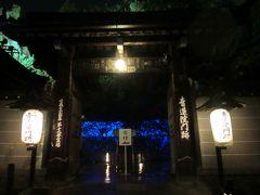 【京都】 青蓮院門跡の青いライトアップ