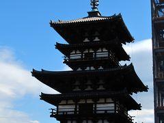西ノ京-2 薬師寺 西塔が再建されて ☆東塔の解体修理始まる