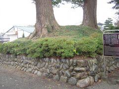 武蔵立川館跡(普済寺)訪問