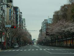 ■2011年4月3日 都内の桜を見ながら美濃吉の懐石を楽しんできました。