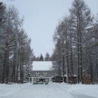 お正月は冬の十勝≪中札内農村休暇村フェーリエンドルフ≫1月1日