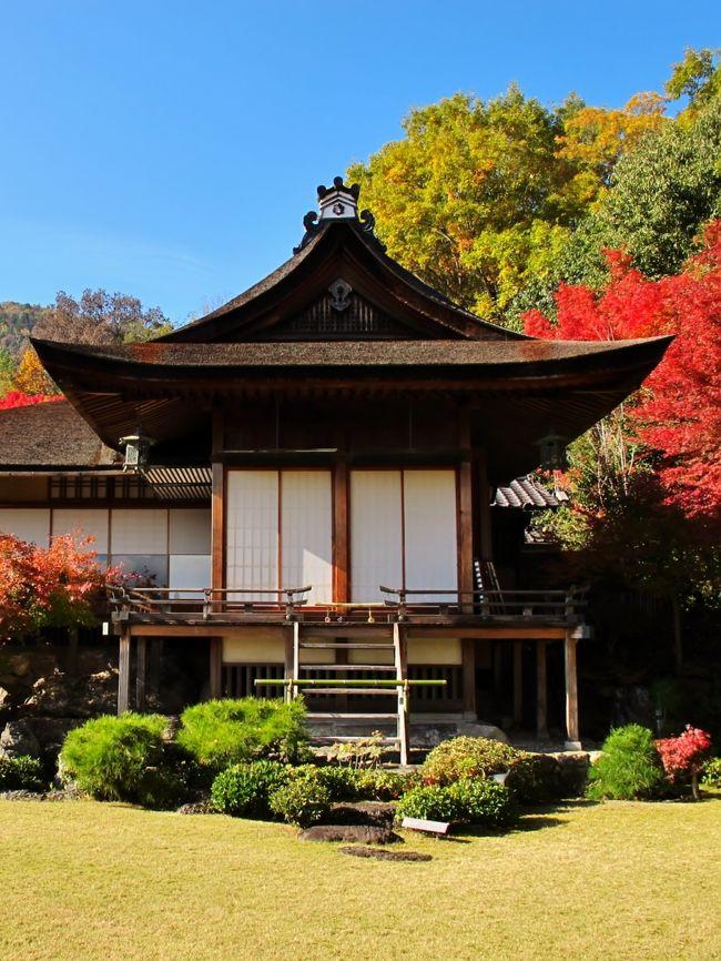 大河内山荘(おおこうちさんそう)は京都市右京区嵯峨にある日本庭園。時代劇などで知られる俳優大河内傳次郎が別荘として造営した回遊式庭園である。<br />昭和9年(1931年)、傳次郎34歳のとき、当時長期保存が難しかったフィルムに対し永く消えることのない美を追究するため自身で設計しこの庭の造営を始めた。映画出演料の大半を注ぎ込み64歳で亡くなるまで30年の歳月をかけてこつこつと作り上げたものである。 場所は小倉百人一首でも知られる小倉山の南東面、嵐山公園(亀山公園)に挟まれた約2万平方メートルの荒地であったところに位置している。<br /><br />大乗閣(登録有形文化財)]<br />寝殿造、書院造、数寄屋造など日本の住宅の伝統的様式を合わせ取り入れた建物で傳次郎の構想に基づき数寄屋師の笛吹嘉一郎が施工した。<br /><br />滴水庵と前庭庭園<br />東の嵐山、遠くは比叡山、西の保津峡を借景にした回遊式であり庭師広瀬利兵衛とともに造営を行った。<br /><br />大河内傳次郎資料館<br />当たり役の丹下左膳姿の写真など大河内傳次郎の姿を伝える施設。<br />*入場者には抹茶と茶菓子(モナカ)のサービスがある。<br />(フリー百科事典『ウィキペディア(Wikipedia)』より引用)<br /><br />大河内山荘については・・<br />http://kanko.city.kyoto.lg.jp/detail.php?InforKindCode=1&amp;ManageCode=4000001<br />http://kyotocity.cool.ne.jp/niwa/ookouchi.htm<br />http://tabitano.main.jp/7okouti.html<br /><br />