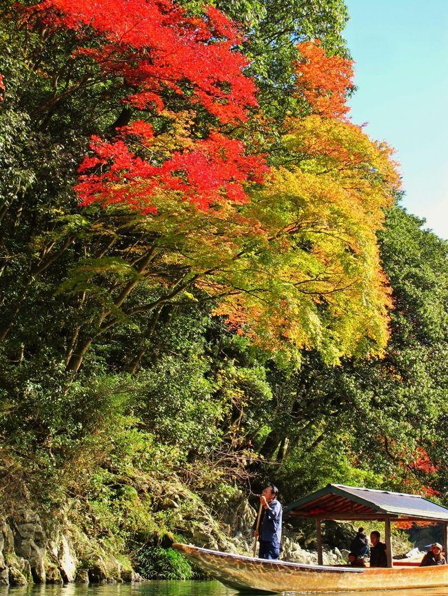 京都・嵐山の中心を流れる大堰川(おおいがわ)。 大堰川では、平安時代にお公家様がお船遊びをされたことに端を発し、明治の初めから観光用として屋形船が遊覧しております。<br />     <br />大堰川上流まで、船頭が竿一本で遊覧致します。 所要時間30分<br />        貸切:2人まで/3,500円+1人増えるごとに1,100円   <br />     乗合:繁忙期のみ・随時出船 大人/1,100円・小人(4〜12歳)/550円<br />(下記より引用)<br /><br />嵐山通船?については・・<br />http://www16.plala.or.jp/kyoto-yakatabune/index.html<br />