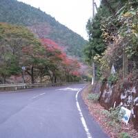 鎌北湖と奥武蔵グリーンラインと名栗湖の紅葉