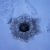JRで大沼公園、氷上でわかさぎ釣り体験