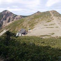 原生林の残る北八ヶ岳に登る