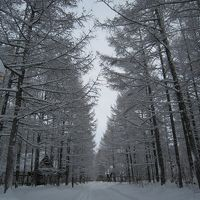 お正月は冬の十勝≪中札内農村休暇村≫1月2日