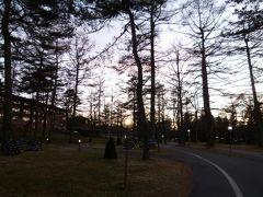 白い樹氷の軽井沢で優雅なリゾート♪ Vol9(第3日目:午後~夜) ☆軽井沢プリンスホテル・ウェストの中華料理「桃李」でディナー♪