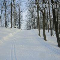 冬の北海道2012(名寄1.10)