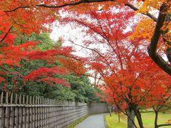 京都の御所と離宮(12) 紅葉に誘われて 秋の桂離宮へ