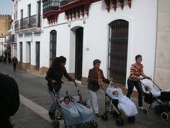 カルモナ_Carmona 一面のヒマワリ!..にはまだ早かった、セビーリャ近郊の美しい町