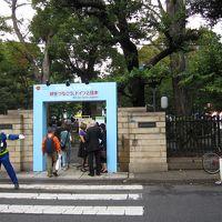 有栖川宮記念公園で開催のドイツフェスティバルに行く
