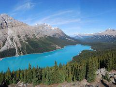氷河の造形・カナディアンロッキー ガイドも驚く好天気で美しい森と湖を満喫