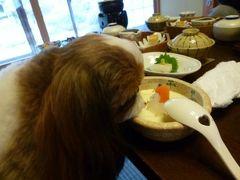 冬の修善寺温泉:愛犬と優雅に過ごす旅♪ Vol10(第2日目:朝) ☆修善寺旅館「絆」離れの特別室「藤波の間」で宿泊:愛犬と一緒に朝食を頂く♪