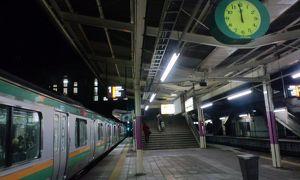 20111229-0103 年末年始一人旅(12) 3日目-6 高崎へ (しなの鉄道線、JRバス等)