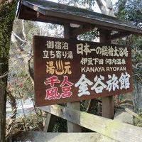 1泊2日、伊豆方面立ち寄り湯の旅(2011年2月)。。。その1「河内(こうち)温泉 金谷旅館千人風呂」
