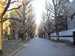 ●東京散歩(谷根千周辺)