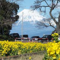 戸田港から富士山を撮影