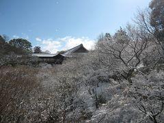 2012年2月~暦は春でも凍える京都で雪の東福寺