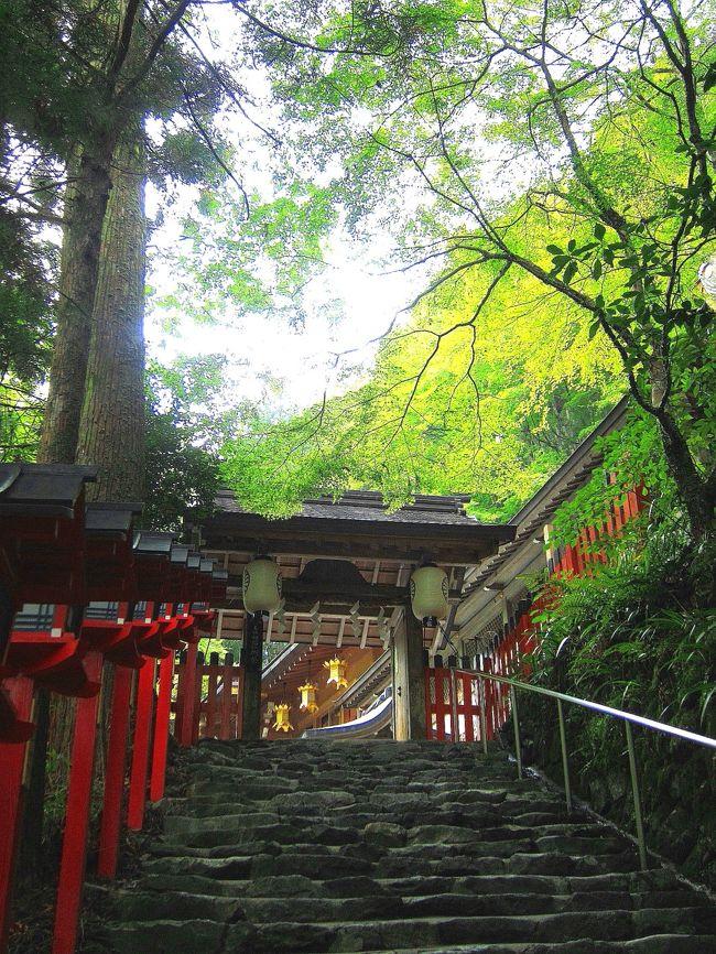 正直京都って苦手です(^^:)。うーん・・・どーして苦手なんだろう?多分京都って見所が多岐に渡り過ぎていて計画を立てる段階であっちこっち意識が散らかり過ぎて疲れちゃうからだろーなー。<br /><br />なのに何で京都?!<br /><br />大好きな共立グループのお宿が嵐山に出来まして、そのお宿のグランドオープン前の「モニタープラン」なるものの空室をすっごい良い日取りに見つけちゃったからなのです。嵐山のど真ん中に共立グループの真新しいお宿!モニタープランだからこそのお得な価格♪いくら京都は苦手だからといってもこれは行くしかないよねー(^^)。