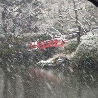 雪の降りつもる旧安田庭園・清澄庭園