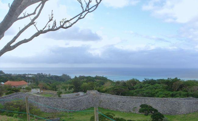 沖縄の冬は天候がいまいちということで、天気が心配でしたが、雨にほとんど降られることなく過ごすことができました。<br />今回は北部に絞り、<br />1)美ら海水族館、<br />2)今帰仁城跡見学、<br />3)古宇利島へドライブ<br />4)日ハム名護キャンプの練習試合観戦<br />5)オリオンビール工場見学<br />6)ヘリオス酒造工場見学<br />7)御菓子御殿工場(恩納村)見学<br />8)万座毛 <br />と色々観光をしてきました。<br />美ら海水族館と今帰仁城跡、万座毛は2回目でしたが、前回は夏に行ったのでまた少し違った感じで楽しめました。<br /><br />個人手配で行ったのですが、交通手段は空港からホテルまでは行きは高速バスを使いました。やっぱりちょっと不便でした。<br />片道の料金(大人2人分)で1日のレンタカー代に相当します。<br />結局、レンタカーを借りて周辺を観光しました。沖縄は車必需ですね。<br /><br />食事は、沖縄ではやっぱり「沖縄そば」with豚肉 で毎食食べると流石に飽きます。外食するなら、スーパーで寿司パックを買った方が美味しいと感じたりも。海が近いからか、スーパーの寿司ネタは比較的新鮮です。グルクン(沖縄の県魚)の唐揚げも美味しいです。<br />そう、スーパーでは必ず、買い物袋を持参しないと代金を3円取られます。<br />