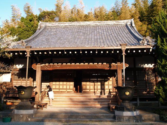 横浜市栄区上郷町にある證菩提寺は高野山真言宗のお寺で五峰山一心院證菩提寺という。治承4年(1180年)、石橋山で戦死した佐那田与一の霊を弔うために、建久8年(1197年)に源頼朝が創建したと伝えられる古刹である。かつては広大な敷地を持っていたために、本堂があった位置すら分かってはいない。この寺は、鎌倉の鬼門にあたり、一大穀倉地帯である「山内本郷」の中心にあり、鎌倉中に組み入れられていた地でもある。寺の住職は鶴岡八幡宮寺から派遣されており、戻ることが多かったために、歴代住職の墓は少ないのだという。明治維新で鶴岡八幡宮寺は神社に変わったが、ここ證菩提寺は高野山真言宗の寺のままで残った。<br /> 源頼朝創建の寺であり、創建以来檀家はなかったが、最近になって寺の南側に證菩提寺霊園を造成し、墓地を分譲するようになってようやく潤うようになった。<br /> 平安期とされる阿弥陀三尊像(定朝流)は、国の重要文化財に指定されており、修復後に横浜市歴史博物館で展示されたことがあった。今は本堂横の宝蔵庫に安置されている。初期の本尊と伝えられる阿弥陀如来像も鎌倉期運慶流の作で県の重要文化財となっている。<br /> 本堂の棟持瓦には笹りんどうの源氏の家紋が入り、鎌倉市ではマンホールなどに良く目にするが、ここ横浜市の源頼朝創建の寺でも見られる。ただし、人が踏みつけたりすることはない。<br />(表紙写真は證菩提寺本堂)