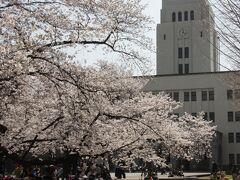 大岡山の桜 東京工業大学卒業式の思い出2013/2006/1968/1966 Memory in Tokyo Institute of Technology