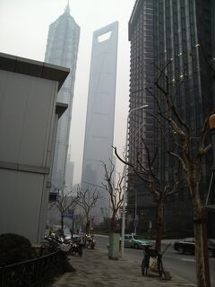 2009年 蘇州・同里の旅 8 上海ちょこっと観光<終>