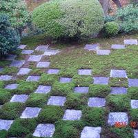 もうすぐクリスマスなのであえて京都ではんなり?の旅�東福寺の庭を満喫