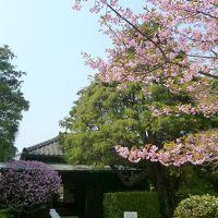 2012/03/28 ぶらり松戸の戸定が丘歴史公園へ