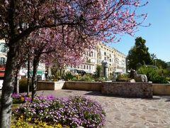 春の優雅なコートダジュール旅♪ Vol8(第2日目午前) ☆ニースのマセナ広場:美しい花や桜を愛で春を満喫♪