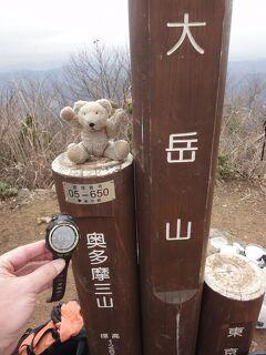 【予告編】目指せ、国内3000m級22峰踏破! <その3>鳩ノ巣~海沢探勝路~大岳山~御岳山