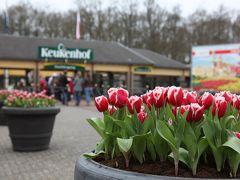 2012 早春のキューケンホフ公園