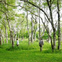 北海道  釧路湿原~知床自然めぐり