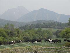 2011年6月 諏訪地方・八ヶ岳・信濃グランセローズ観戦【③清里高原】(2011年6月)