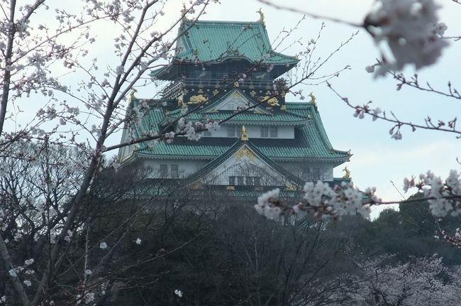 日吉大社でお花見の予定でしたが、まさかの桜咲いておらず。<br /><br />参考旅行記<br />http://4travel.jp/traveler/ishisai/album/10660422/<br /><br />お花見のメッカ、大阪城へ移動しました。<br /><br /><br />大阪城ホールでは、HYのコンサートしてました。<br />ダフ屋のおじさん達は私達は興味が無いだろうと見込んで、声も掛けてくれず(-_-)<br />HY好きなんだけど、若さについていけてない事を実感しました。<br /><br />大阪城公園では、<br />桜がものすごく見頃で、きれかったです。<br />わざわざやって来て良かった(^^)<br />そして、花見宴会の真っ最中。<br />バーべーキューされる人が多かったです。<br />いい匂いに小腹かすきました。<br /><br /><br />鶴橋で焼き肉にしようと、環状線に乗って移動。<br />JR鶴橋駅の改札口でコリアンタウンに引き寄せられちゃいました。<br />鶴橋をウロウロしようと思ってやってきましたが、コリアンタウン目指してた。なんでだろう。。。<br /><br />生野コリアタウン<br />http://www.ikuno-koreatown.com/<br />日本一大きなコリアタウンだったんですね。<br />予習してから行けばもっと楽しかったでしょうから、悔やまれます。<br /><br />美味しい食事にありつけて、今日は食べ物系には恵まれた1日でした。