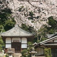 西尾市吉良町の春の名所めぐり