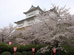 津山城の桜と城下町散策