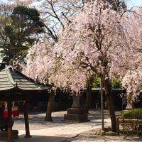 深大寺と神代植物公園