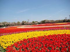 ぶらり日本の城めぐりその32<桑名城跡>と桑名街歩き なばなの里の色とりどりのお花と長島地ビール飲み比べの旅