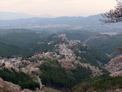 2012年 京都と奈良で桜を愛でる(その4)
