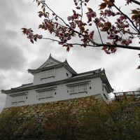 本能寺で信長に殉じた森蘭丸の弟忠政が12年の歳月をかけて完成させた津山城址鶴山公園