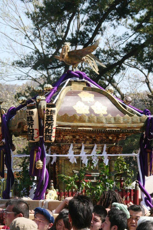 鎌倉で4月8日から15日までの1週間に及ぶ「第54回鎌倉祭り」があり、ちょうどこの時期桜が満開で、両方の見学を兼ねて出掛けてみました。<br /><br />初日の8日には御輿行列や鶴岡八幡宮での「静の舞」、15日には流鏑馬等が行われるようでしたが、小生は8日の御輿行列だけを見ることができました。桜の花の満開の下で何十台もの神輿が練り歩く様は壮観でした。<br /><br />昨年は東日本大震災直後ということもあって春の鎌倉祭りはすべて中止(流鏑馬のみ実施)されましたが、今年は復興継続支援ということで、大々的に開催されました。<br /><br />昨年(2011年)4月の鎌倉祭り「流鏑馬」の記録もご覧ください。<br /><br />■ 「鎌倉鶴岡八幡宮の『被災復興支援流鏑馬』を見る」<br /> http://4travel.jp/traveler/srilanka/album/10560904/<br />