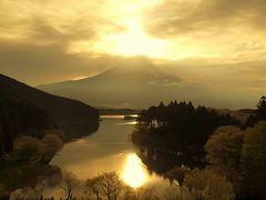 富士山ぐるり旅No.1 白糸の滝に見とれ田貫湖で富士山に圧倒される 富士宮グルメも満喫しよう!