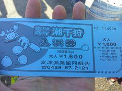 富津岬で潮干狩り。GWでも大漁です。おおきなアサリとハマグリも取れます。
